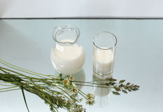 Jug and glass with milk Stock Photos