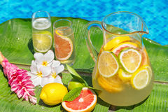 Jug of home made iced lemonade on edge of swimming Royalty Free Stock Photo