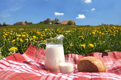 Jug of milk and bread Royalty Free Stock Image