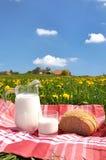 Jug of milk and bread stock photos