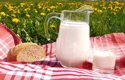 Jug of milk and bread on the spring meadow Royalty Free Stock Image