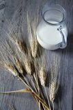 Jug of milk and bred grains Royalty Free Stock Photos