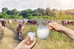 Jug of milk in hand and a glass . Royalty Free Stock Images