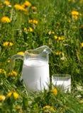 Jug of milk Royalty Free Stock Photography