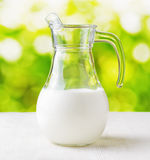 Jug of milk on nature background. Half full pitcher Stock Images