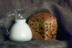 Jug with milk and whole grain bread Royalty Free Stock Images