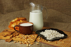 Jug with a mug of milk and sunflower seeds. Still life in rural style with a jug, a mug of milk and sunflower seeds Stock Images