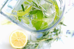 Jug of water with herbs Stock Image