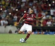 Jugador de fútbol Paolo Guerrero fotografía de archivo