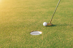 Jugador de golf en el putting green que golpea la pelota de golf en un agujero fotos de archivo libres de regalías