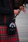 Jugador de la gaita Fotografía de archivo libre de regalías
