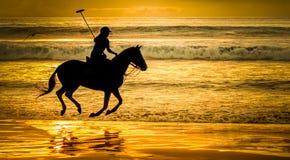 Jugador de polo en la playa Fotos de archivo
