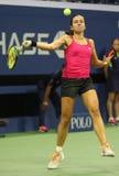 Jugador de tenis profesional Anastasija Sevastova de Letonia en la acción durante su partido final cuarto del US Open 2016 fotografía de archivo