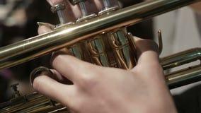 Jugador de trompeta del Mariachi metrajes