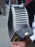 Jugador del acordión Fotos de archivo