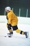 Jugador del hockey sobre hielo en la acción Foto de archivo libre de regalías