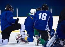 Jugador del hockey sobre hielo en la acción Fotos de archivo libres de regalías