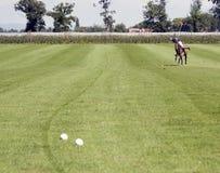 Jugador del polo Imagen de archivo libre de regalías