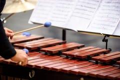 Jugador del xilófono, del marimba o del mazo con los palillos, Fotografía de archivo libre de regalías