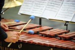 Jugador del xilófono, del marimba o del mazo con los palillos, Foto de archivo libre de regalías
