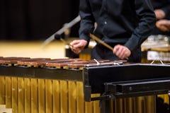 Jugador del xilófono, del marimba o del mazo con los palillos, Fotos de archivo