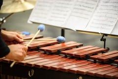 Jugador del xilófono, del marimba o del mazo con los palillos, Foto de archivo