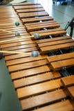 Jugador del xilófono, del marimba o del mazo con los palillos, Fotografía de archivo