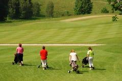 Jugadores de golf Imágenes de archivo libres de regalías