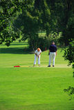 Jugadores de golf Imagen de archivo