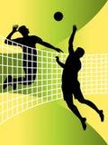 Jugadores de voleibol