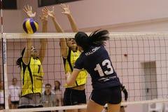 Jugadores de voleibol de las mujeres en la acción Imagen de archivo libre de regalías