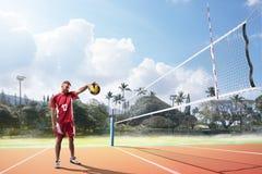Jugadores de voleibol profesionales en la acción en la corte Imágenes de archivo libres de regalías