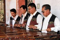 Jugadores del Marimba Fotos de archivo libres de regalías