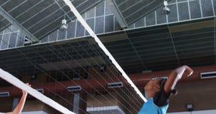 Jugadores femeninos que juegan a voleibol en la corte 4k almacen de video