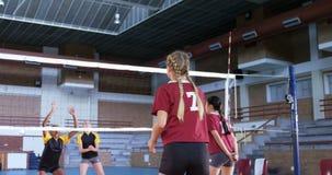 Jugadores femeninos que juegan a voleibol en la corte 4k almacen de metraje de vídeo