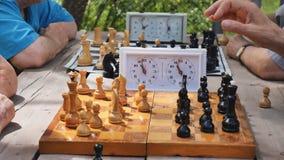 Jugar a ajedrez en el parque en un día de verano almacen de metraje de vídeo