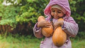 Jugar al aire libre a la niña linda que sostiene una calabaza Cosecha de calabazas, otoño en el jardín, la muchacha preciosa y ca imagen de archivo libre de regalías