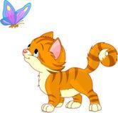 Jugar el gatito Imagen de archivo libre de regalías