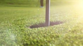 Jugar a golf en mañana hermosa del verano almacen de video