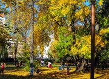 Jugar a niños en el parque en un día brillante del otoño fotografía de archivo libre de regalías