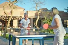 Jugar a ping-pong Imágenes de archivo libres de regalías