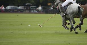 Jugar polo Foto de archivo