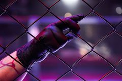 Juge masculin en arts martiaux mélangés image stock