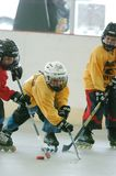 Jugend-Rollenhockeyspiel lizenzfreie stockfotografie