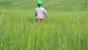 Jugendlich Betrieb über dem Feld unter grünem Gras stock video footage