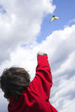 Jugendlich Flugwesendrachen Lizenzfreies Stockbild