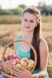 Jugendlich Mädchen mit einem Korb von Äpfeln auf dem Gebiet Lizenzfreie Stockbilder