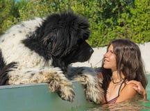 Jugendlich und Neufundland-Hund im Swimmingpool stockfotos