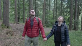 Jugendliche in der Liebe, die sich Hand in Hand in ihrer Gebirgsexkursion küssend während sie gehend durch Wald entspannt stock video
