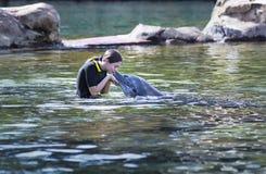 Jugendliche, die einen Delphin in einer Ozeanlagune küsst lizenzfreie stockfotografie